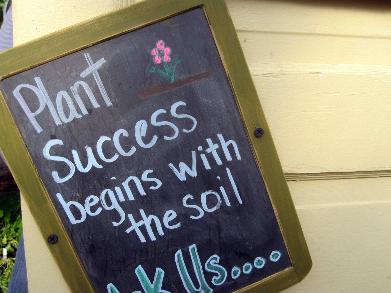 planting the seeds of public relations success