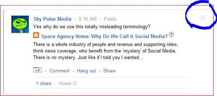 Google Plus allows linking