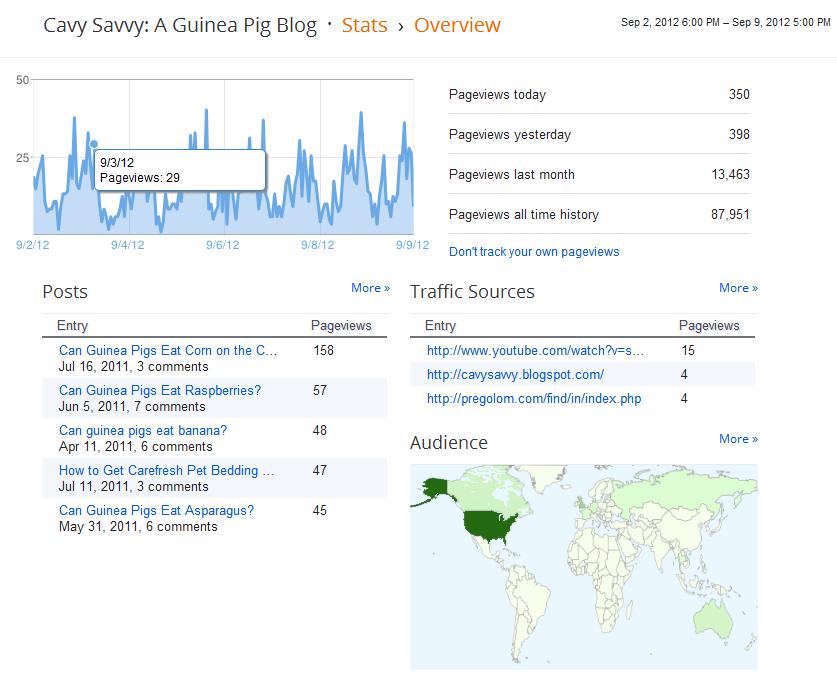 Google Analytics for Cavy Savvy