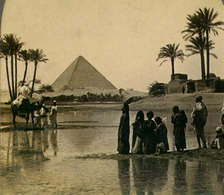 Pyramid and Date Palms