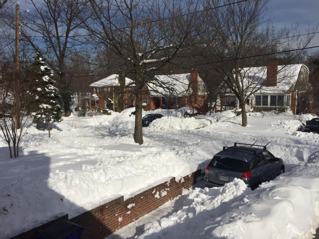 2016's Snowzilla Jonas