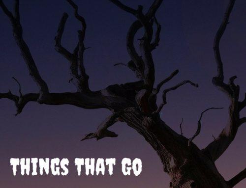 Things That Go Tweet in the Night